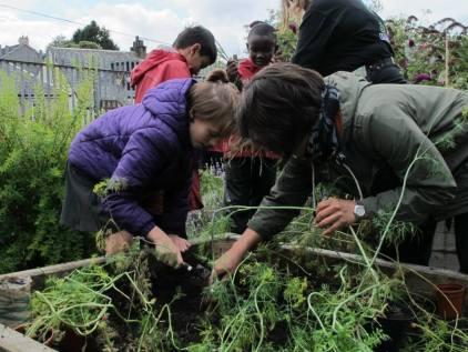 me&gardening3
